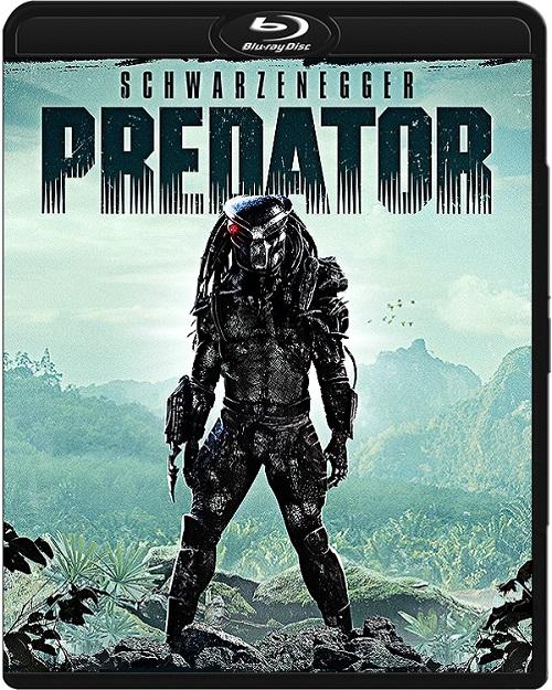Predator (1987-2010) PL.m1080p.BluRay.x264.AC3-DENDA / LEKTOR PL