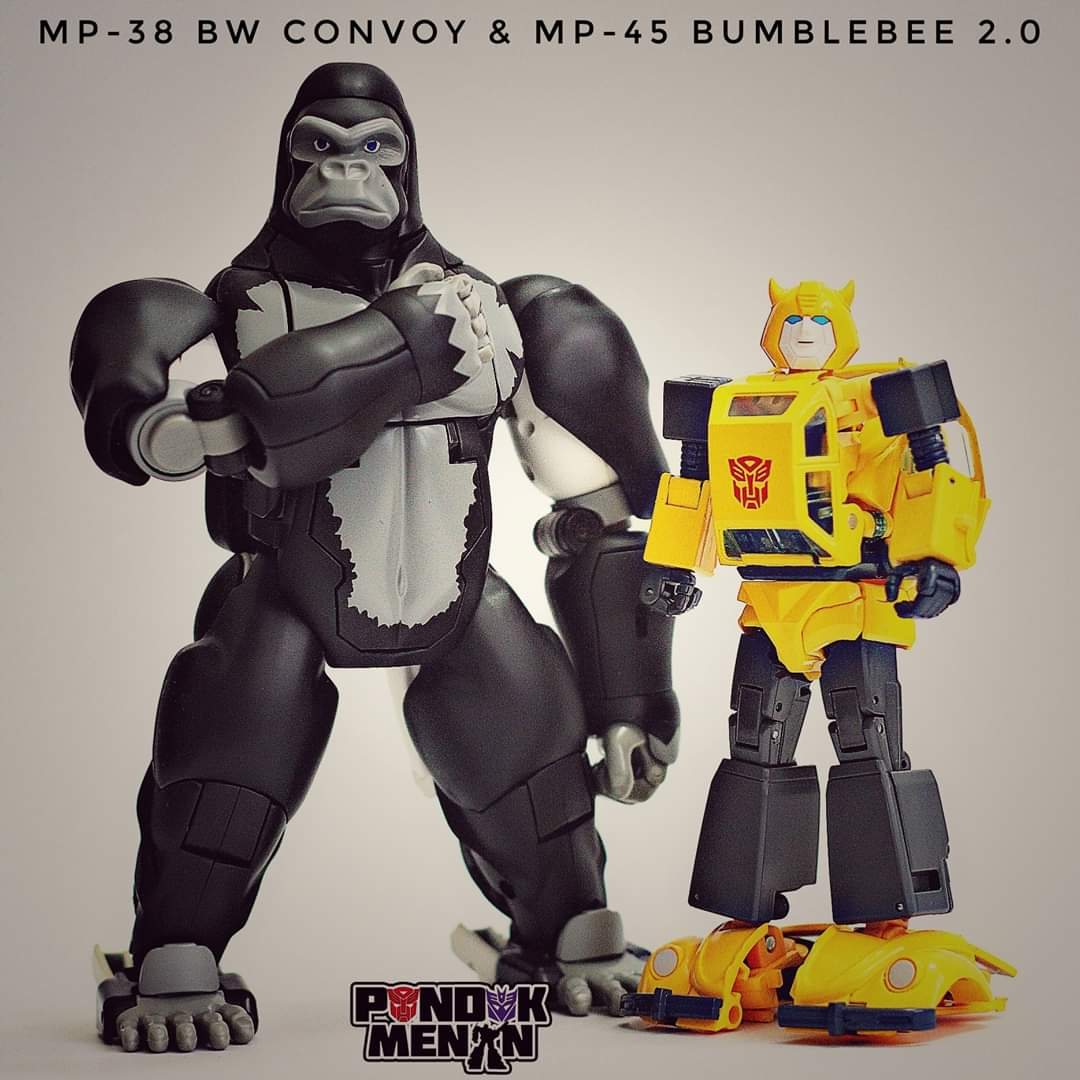 [Masterpiece] MP-45 Bumblebee/Bourdon v2.0 - Page 4 84kfXD8B_o
