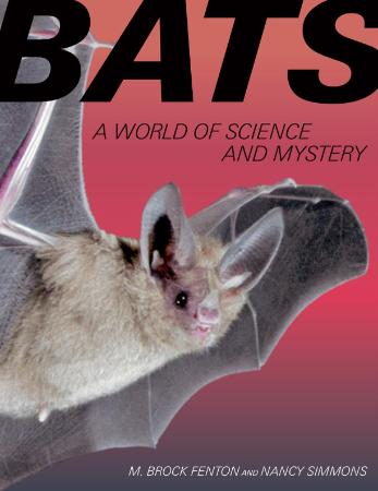 Bats A World of Science and Mystery