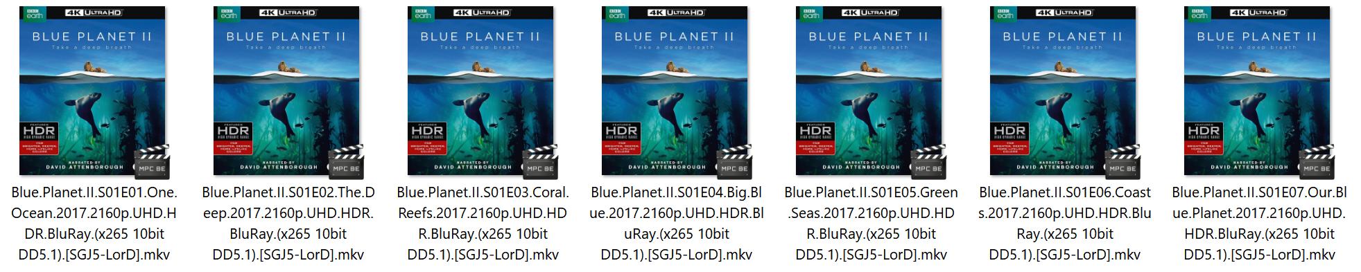 Blue Planet II 2017 2160p UHD HDR BluRay (x265 10bit DD5 1) [SGJ5-LorD]