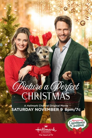 Picture a Perfect Christmas 2019 720p HDTV X264   SHADOW