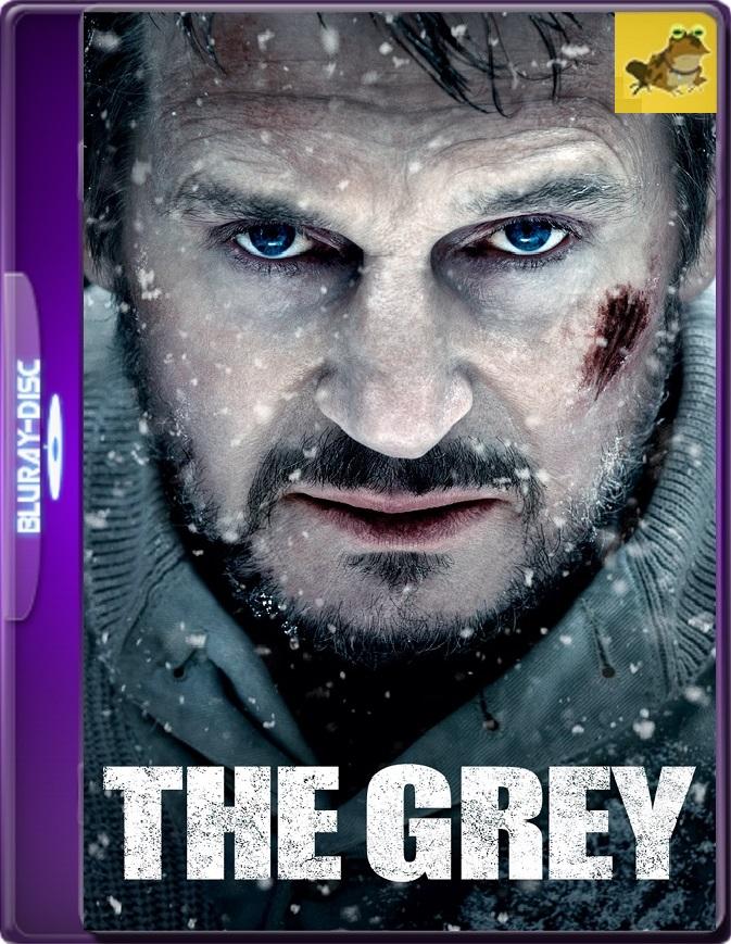 Un Día Para Sobrevivir (2011) Brrip 1080p (60 FPS) Latino / Inglés