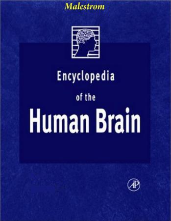 Encyclopedia of The Human Brain, Vol  1-4