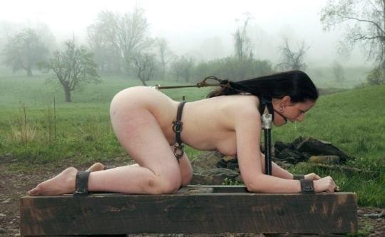 Pregnant bondage xxx-7472