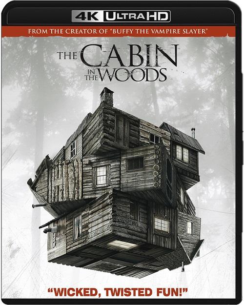 Dom w głębi lasu / The Cabin in the Woods (2012) MULTi.REMUX.2160p.UHD.Blu-ray.HDR.HEVC.ATMOS7.1-DENDA / LEKTOR i NAPISY PL