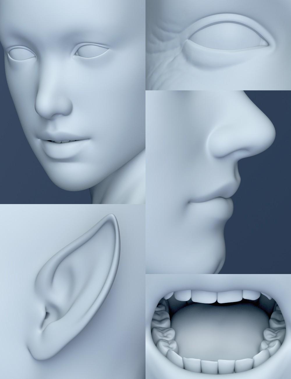 Genesis 8 Female Head Morphs