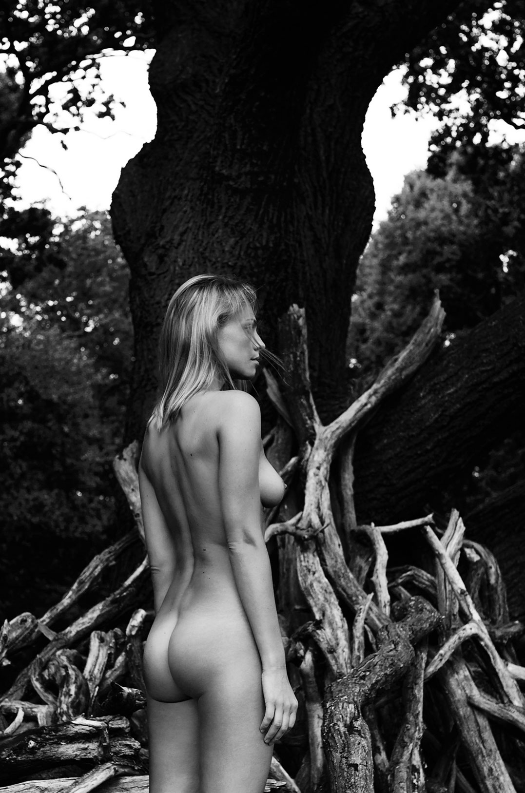 Richmond Park / Aniko Michnya nude by Vaughan Treyvellan