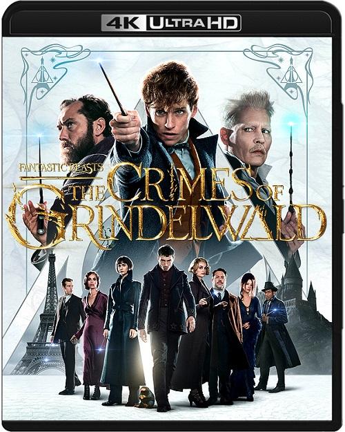 Fantastyczne zwierzęta: Zbrodnie Grindelwalda / Fantastic Beasts: The Crimes of Grindelwald (2018) MULTi.REMUX.2160p.UHD.Blu-ray.HDR.HEVC.ATMOS7.1-DENDA / DUBBING i NAPISY PL