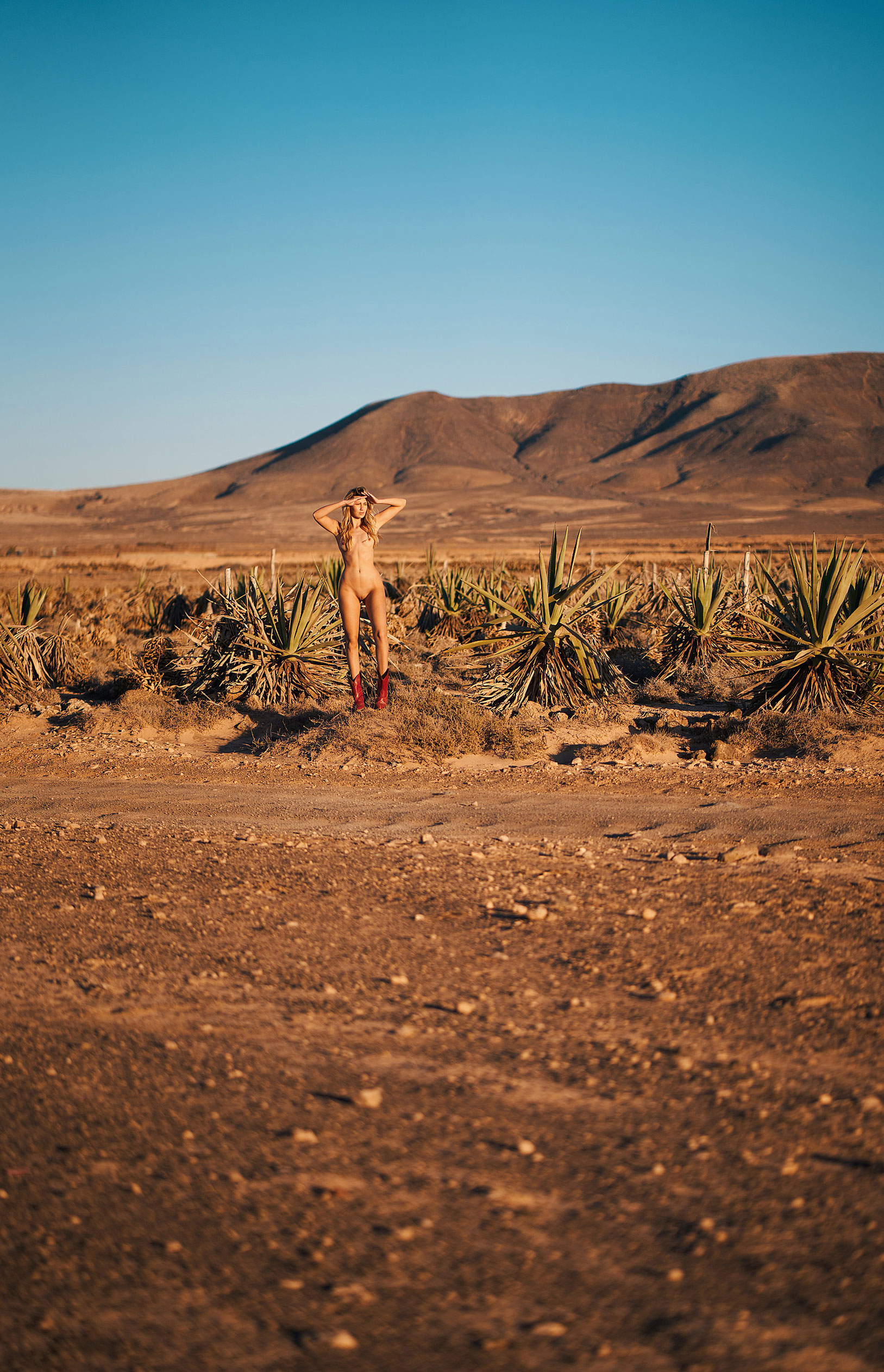 Девушка месяца немецкого Playboy Джессика Уитман / фото 07