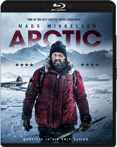 Arktyka / Arctic (2018) MULTi.720p.BluRay.x264.DTS.AC3-DENDA / LEKTOR i NAPISY PL