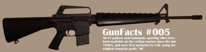 Insainment-Gun-Facts