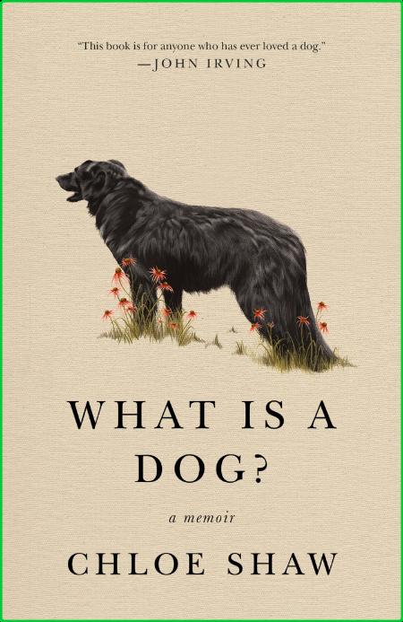 What Is a Dog  A Memoir by Chloe Shaw
