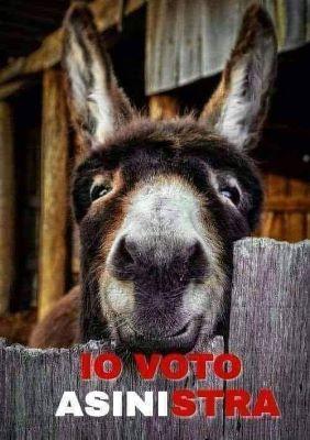 Elezioni europee 2019 - Pagina 3 G5NFZkAT_o