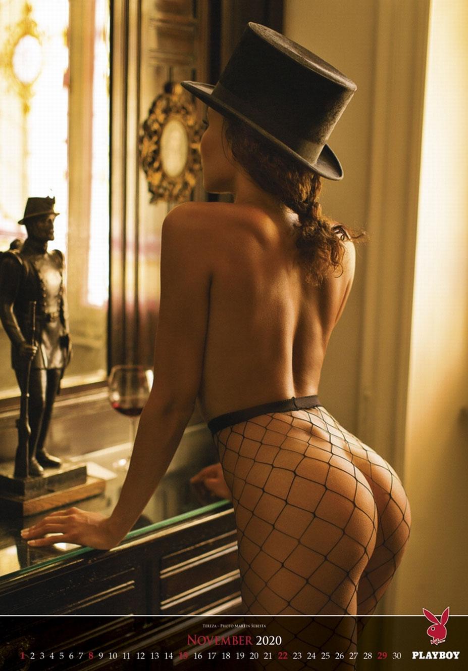 эротический календарь журнала Playboy США на 2020-й год / ноябрь