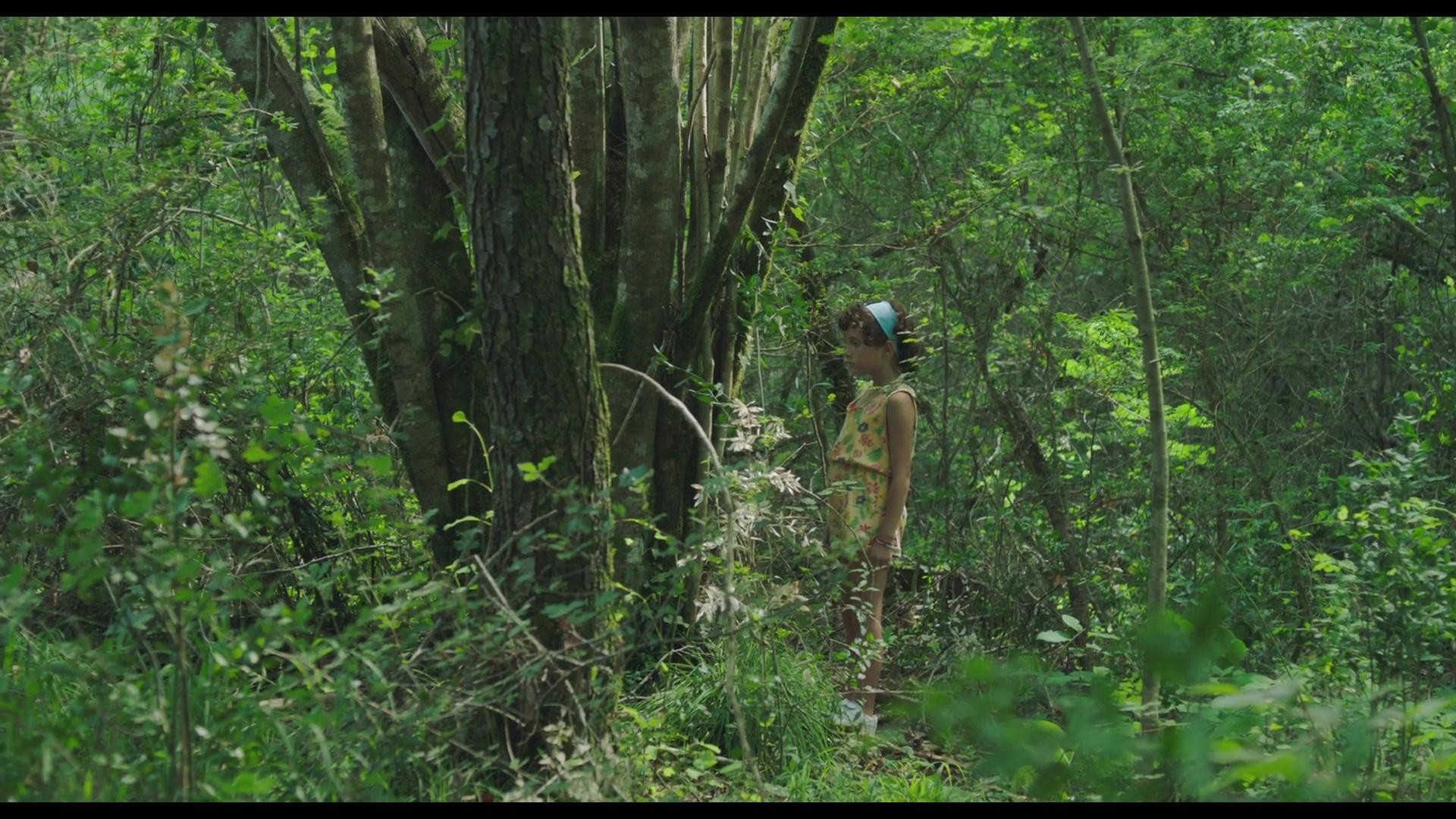 Verano 1993 BRRip 1080p Castellano[Drama](2017)