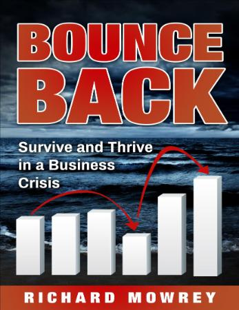 Bounce Back  Survive and Thrive in a Business Crisis