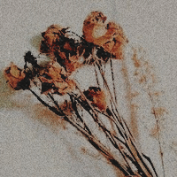 TONI CALDWELL - #(456) 584-1512 4hzD3g0j_o