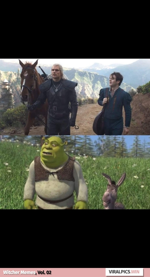 30+ The Witcher Netflix Funny Memes for True Fan of the Game & Show 7