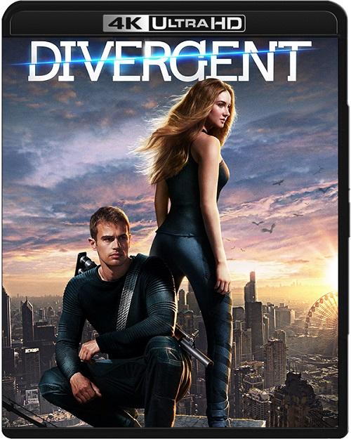 Niezgodna / Divergent (2014) MULTi.REMUX.2160p.UHD.Blu-ray.HDR.HEVC.DTS-X7.1-DENDA / LEKTOR i NAPISY PL
