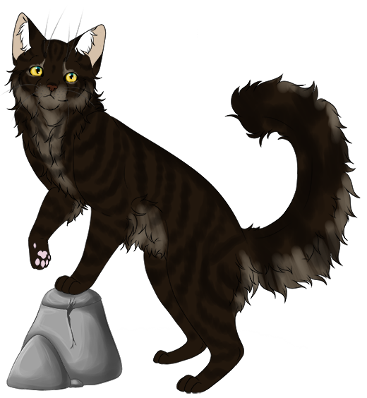 Shadowclan Kittenhub! 0yhHtGKj_o