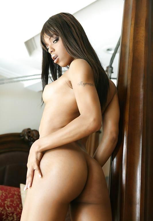Free sexy porn star-9207