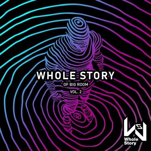 VA - Whole Story Of Big Room Vol. 2 (2019)