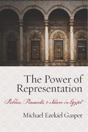 The power of representation publics, peasants, and Islam in Egypt by Gasper, Micha...