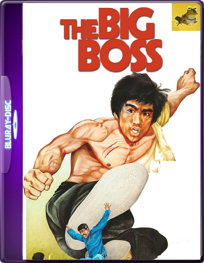 El Gran Jefe (1971) Brrip 1080p (60 FPS) Latino / Chino