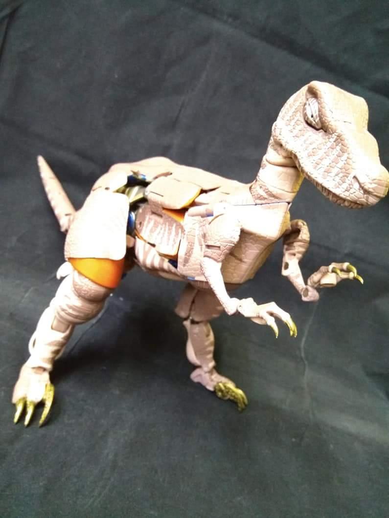 [Masterpiece] MP-41 Dinobot (Beast Wars) - Page 2 FwQGrv80_o