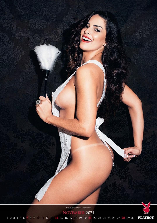 Эротический календарь журнала Playboy на 2021 год / ноябрь