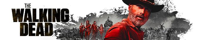 The Walking Dead S10E05 What It Always Is (1080p AMZN Webrip x265 10bit EAC3 5 1 -...