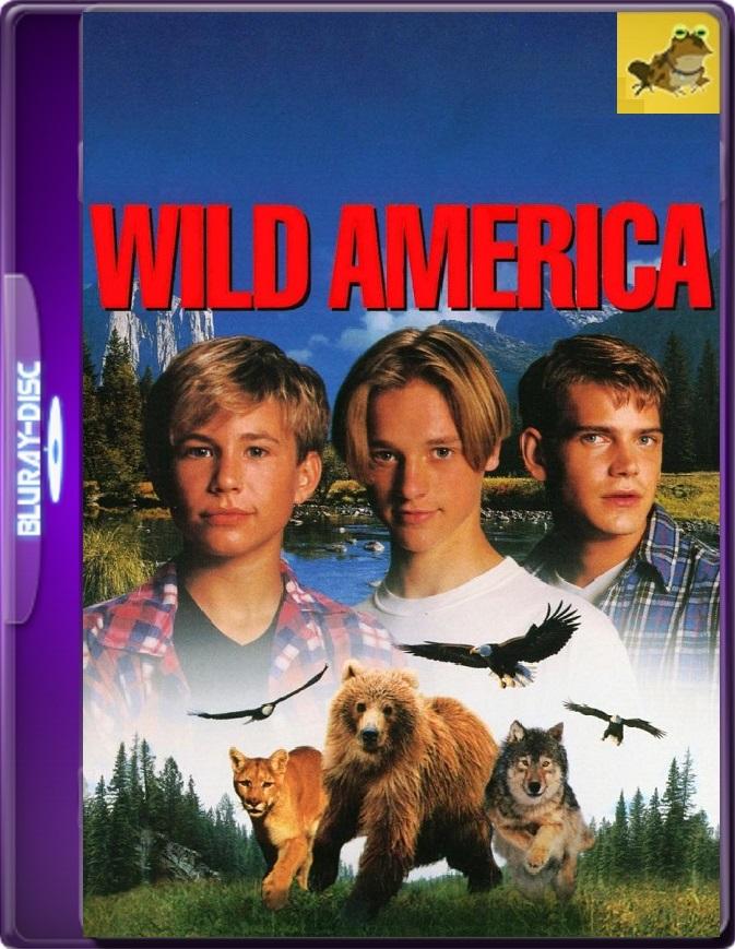 Wild America (1997) Brrip 1080p (60 FPS) Inglés Subtitulado