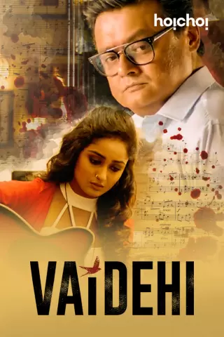 Vaidehi (2021) Hindi 1080p WEB-DL Complete Season 1 x264 AAC-Team IcTv Exclusive