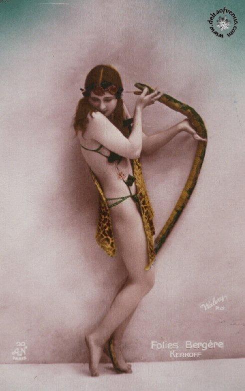 Vintage hairy nude-9326